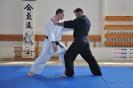 Seminár Aikido-Karate_7